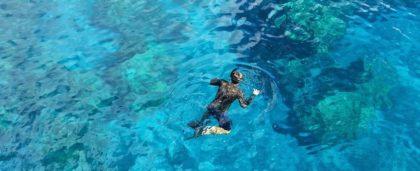 Snorkeling e Battesimo del mare